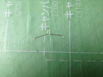 denoha31-1-6.jpg