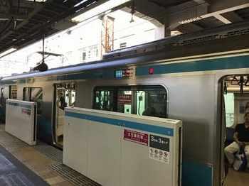 tsuru1-2.jpg