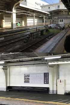 tsuru1-4.jpg