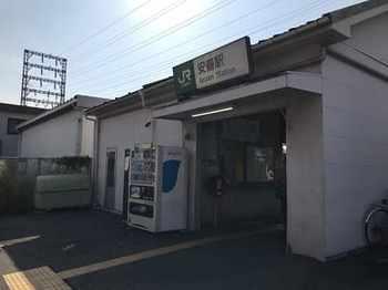 tsuru1-8.jpg