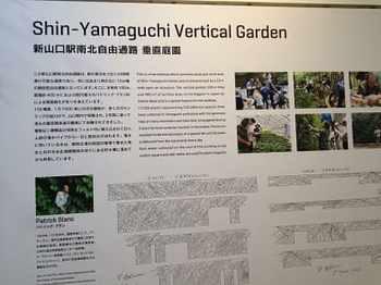 yamaguchi2-11.jpg